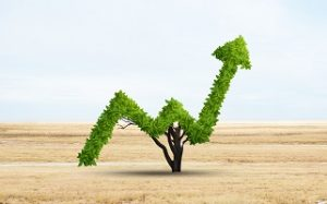 Taller: Impacto de las finanzas sostenibles en la cuenta de resultados – Fundación Ibercaja